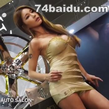 2014韩国车展96