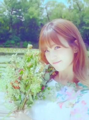 617-A Pink -Flower Petal(Naver)