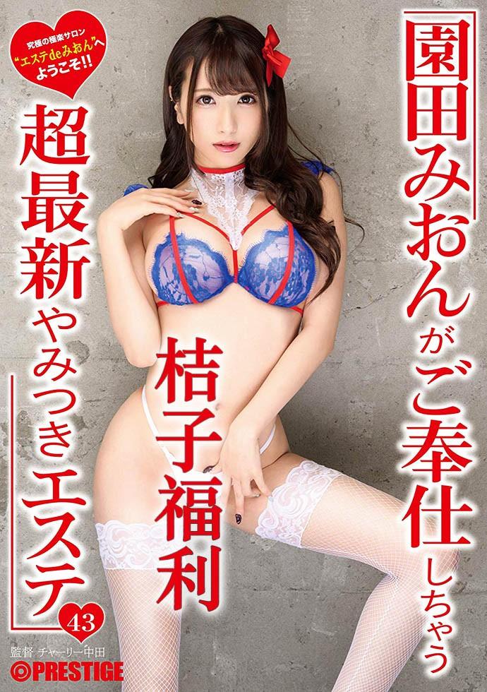 园田美樱作品封面