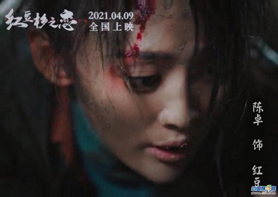 电影《红豆杉之恋》今上映 实力演员陈卓领衔主演