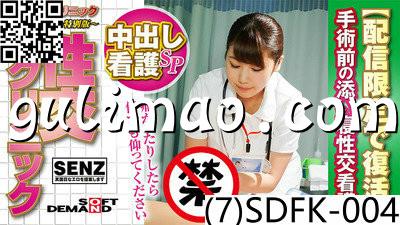 (7)SDFK 004